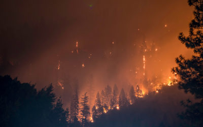 Oregon trial lawyers provide free legal help to wildfire victims