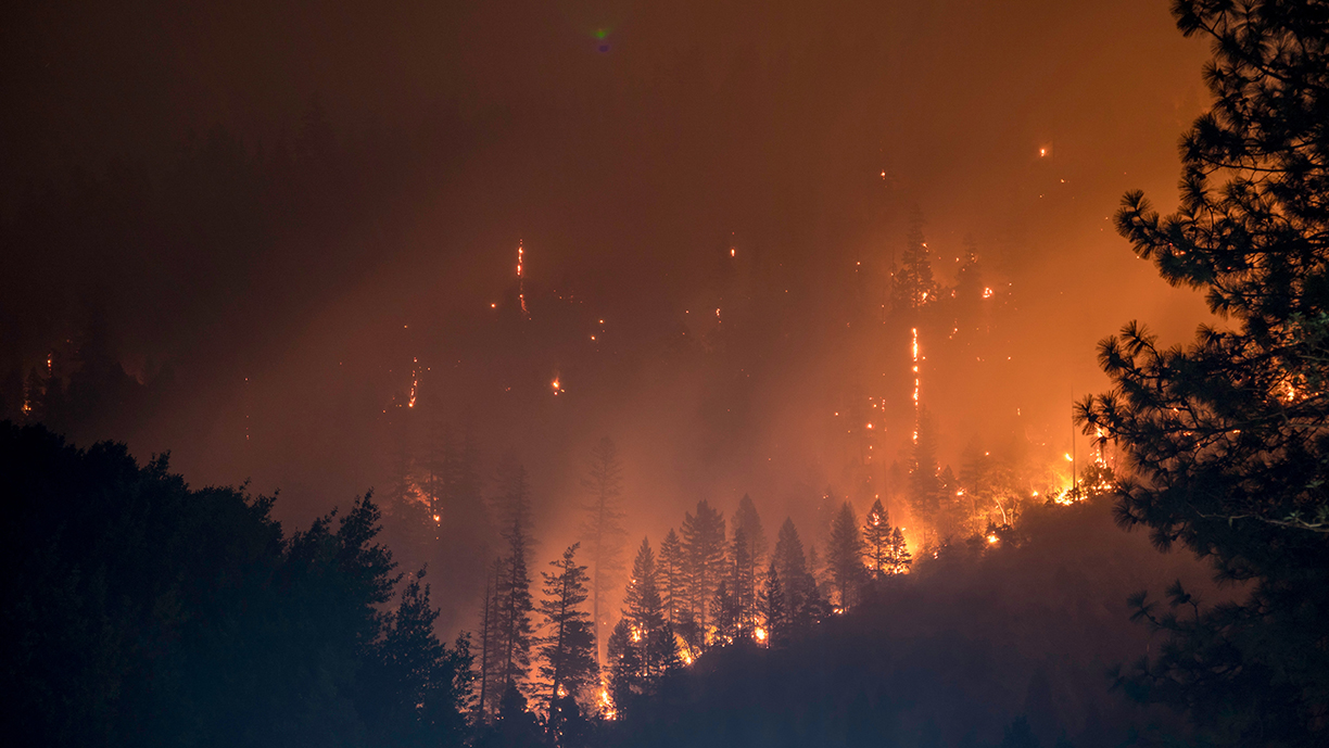 Oregon wildfire assistance